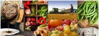 food_procurement_small